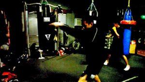 Guia do Boxe Sombra